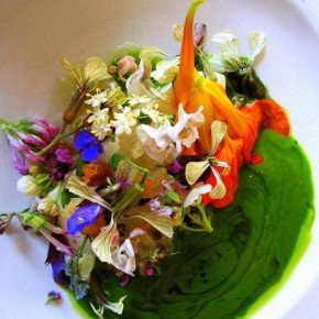 NOMA - THE BEST RESTAURANT IN THE WORLD