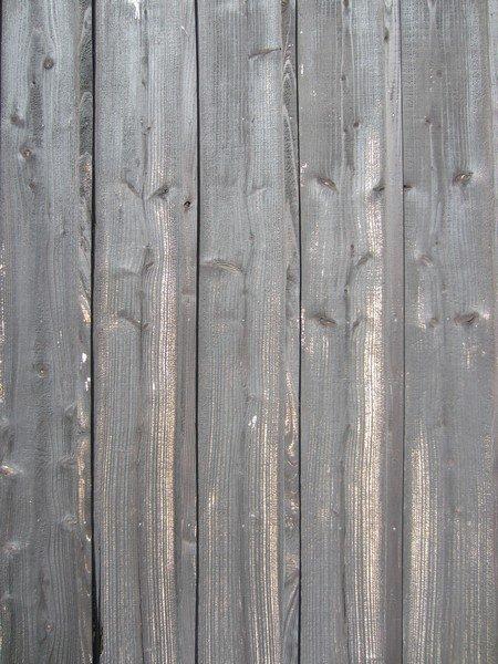 wood teshima 22