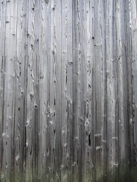 wood teshima 3