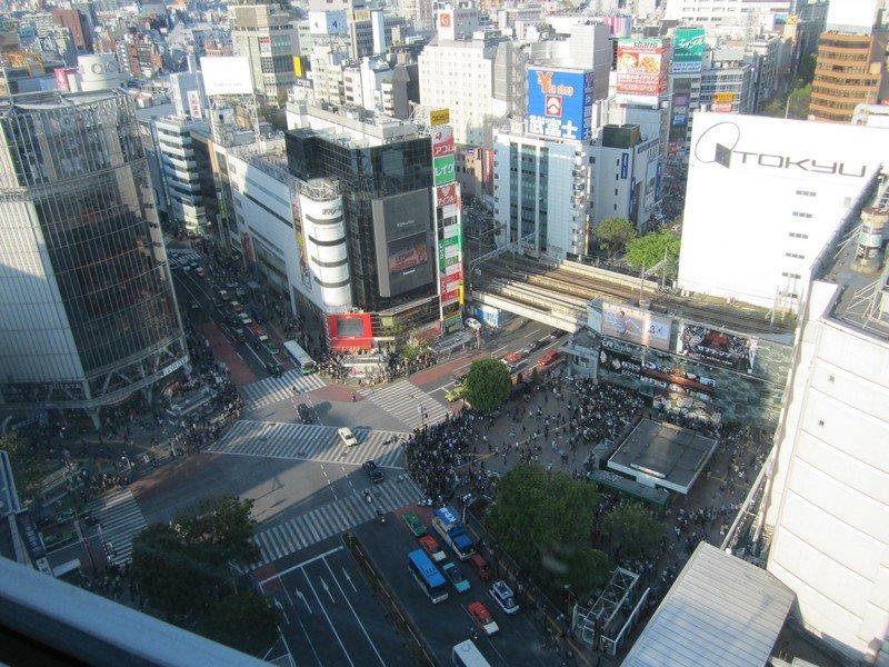 top 10 shibuya 24