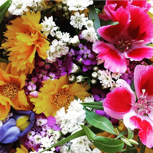 little aesthete top 10 instagram june 2015